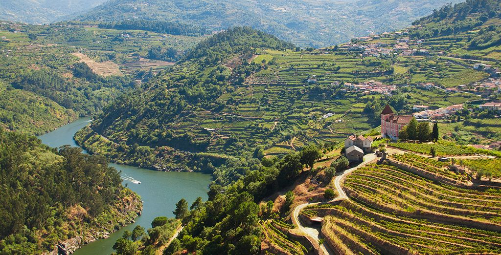 Start to explore Douro Region with Porto