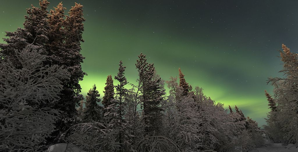 Northern Lights in Laplan : sweden holidays