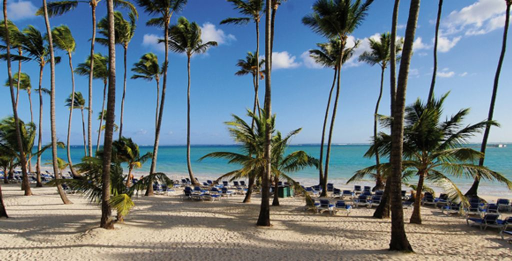 - Barcelo Bavaro Beach Resort**** - Punta Cana - Domincan Republic Punta Cana