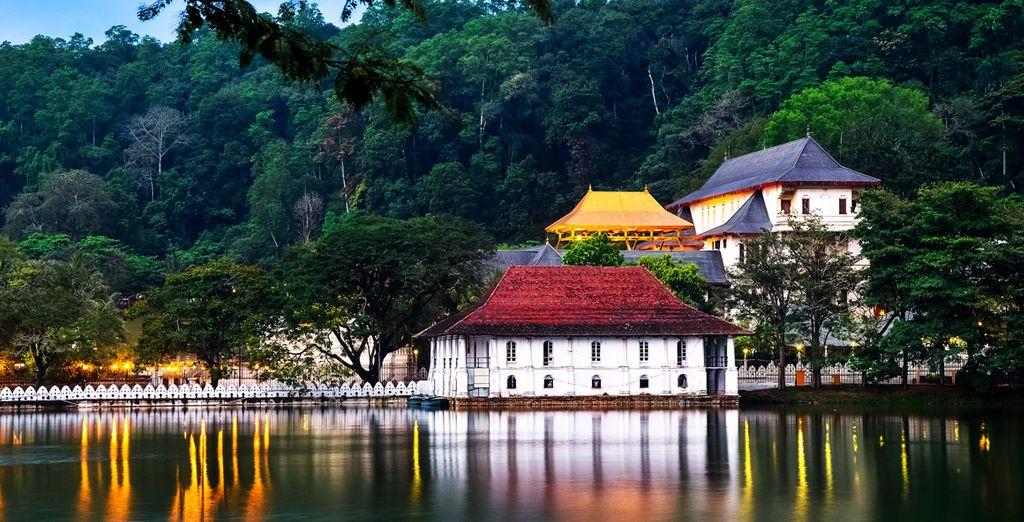 Sri Lanka - Honeymoon