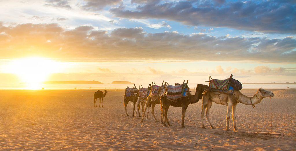 Just minutes from Agadir's famous sandy beaches - Riad Villa Blanche 4*  Agadir