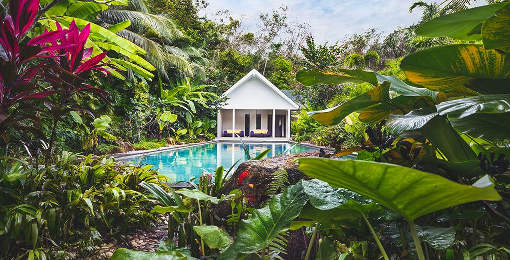 In a tropical and tranquil setting