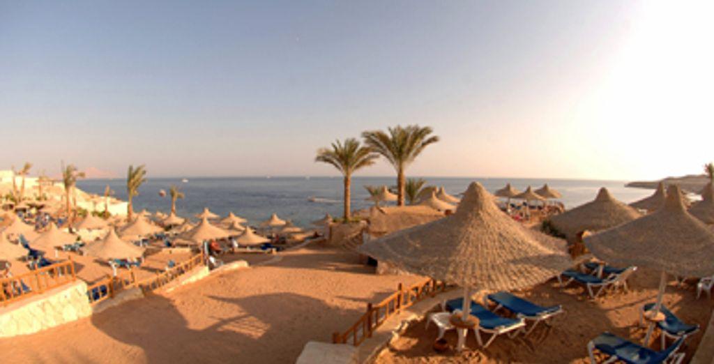 - Hilton Sharks Bay***** - Sharm El Sheikh - Egypt Sharm El Sheikh