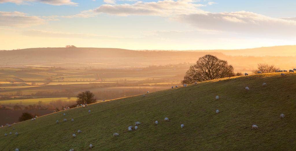 Set in the idyllic countryside of Warwickshire