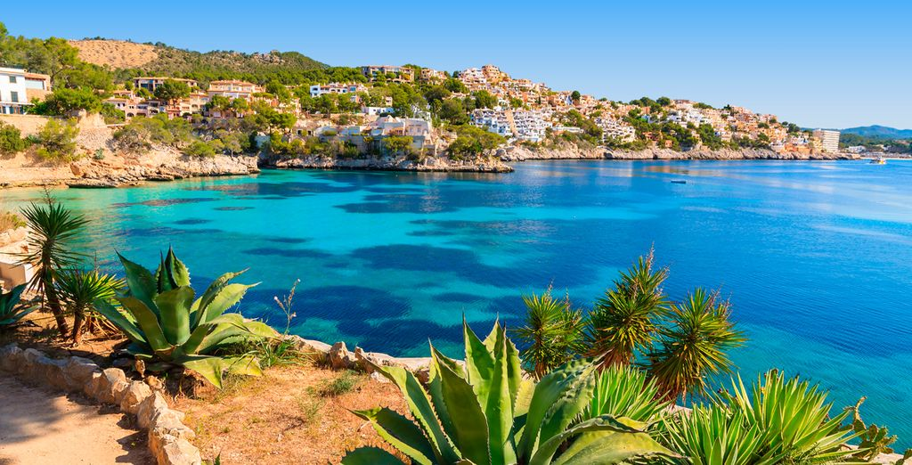 Jet off to the sunny shores of Mallorca...