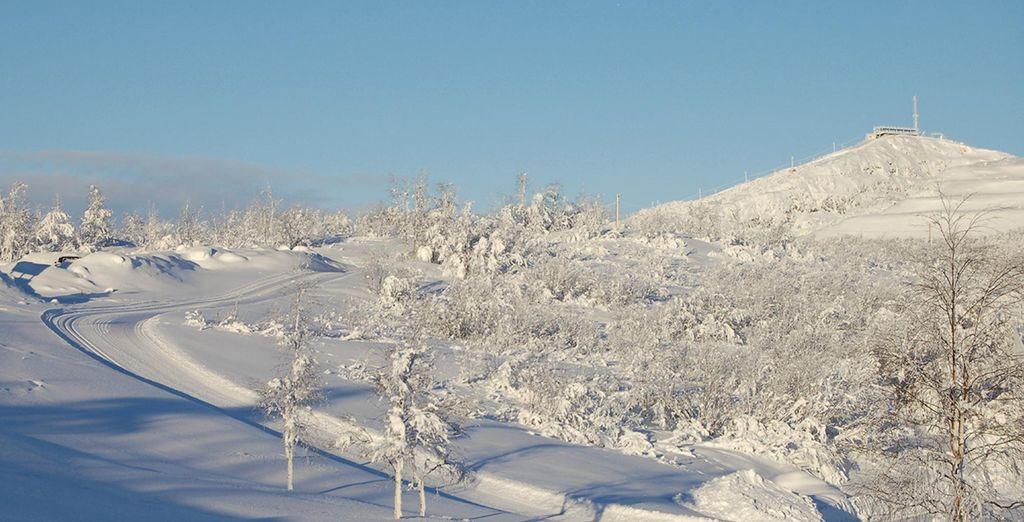 Or a mountain tour through this magical landscape on snowmobile