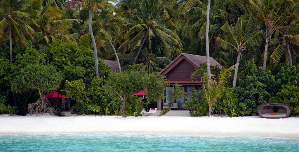 Venture to a tropical wonderland - NIYAMA by Per Aquum 5* Maldives
