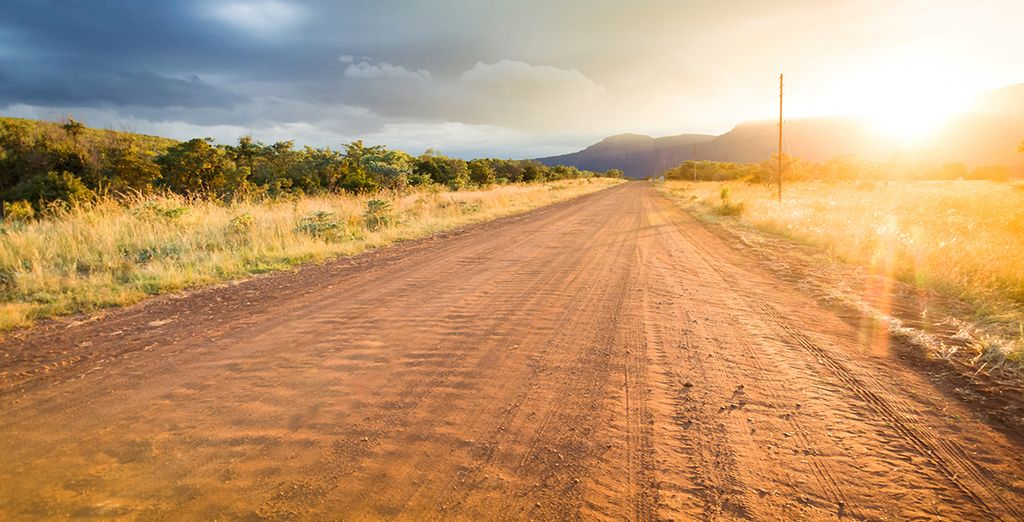 Where you'll enjoy daily game drives