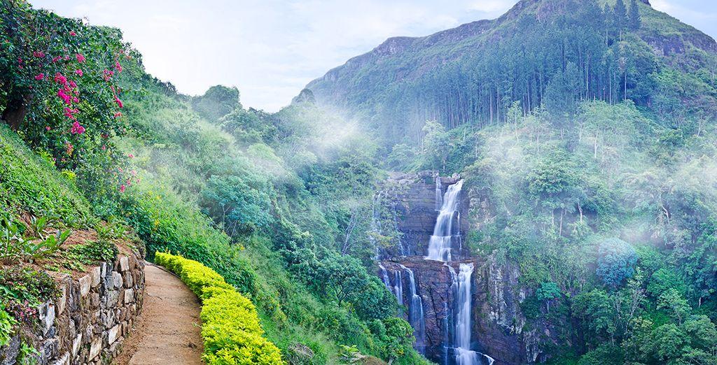 Serene Expedition- Sri Lanka honeymoon