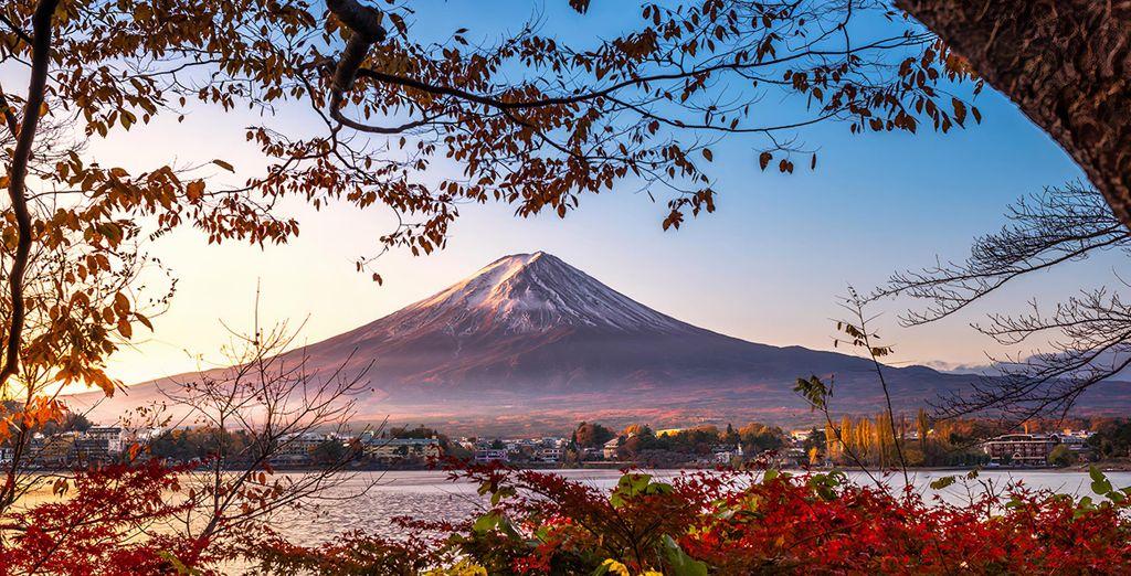 Tour gli splendori del Giappone