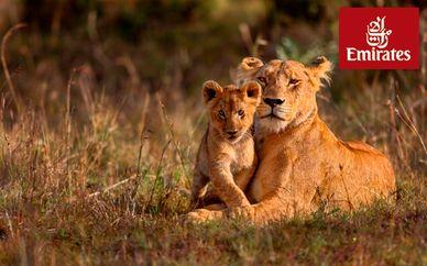 Descubre Kenia con safari