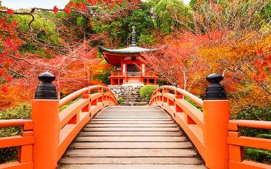 Circuit Découverte du Japon en liberté - 8 à 14 nuits