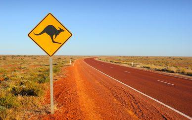 Autotour Sydney à Cairns et extension à l'Ayers Rock