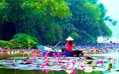Le Vietnam en liberté et Extension possible au Cambodge