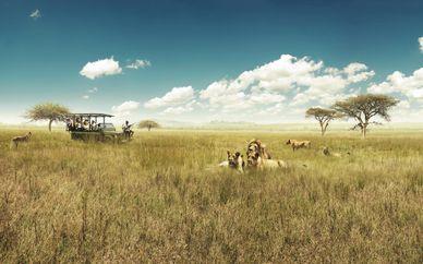 Cape Town & Aquila Game Reserve