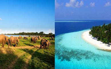 Private Tour of Sri Lanka with Maldives Beach Stay