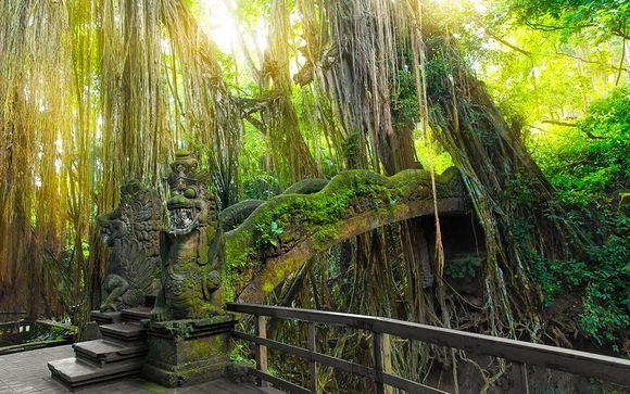 Uw inbegrepen excursies op Bali (voor aanbiedingen met vlucht)