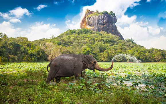 Welkom in ... Sri Lanka