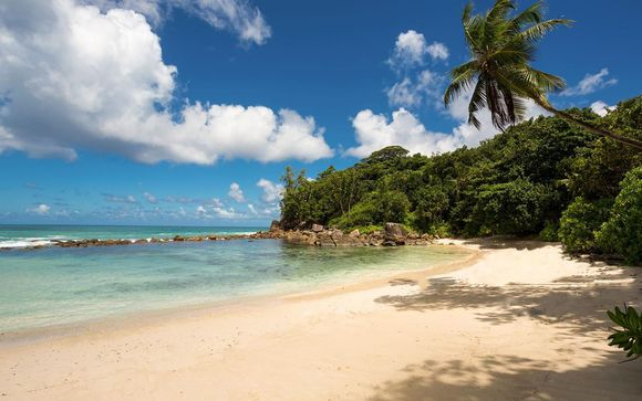 Willkommen auf den... Seychellen!