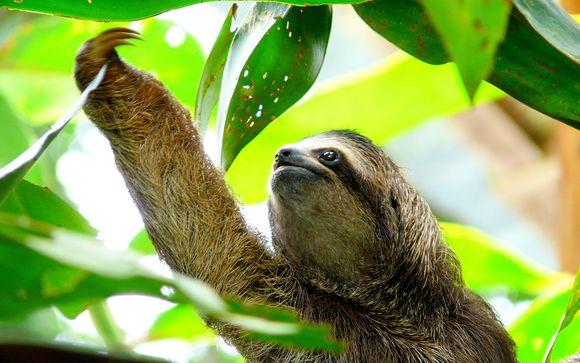 Willkommen in... Costa Rica und Nicaragua!