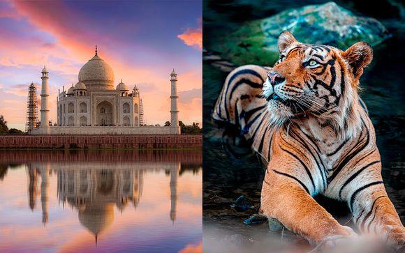India Jaipur - Triángulo Dorado con Ranthambore desde 1.265,00 €