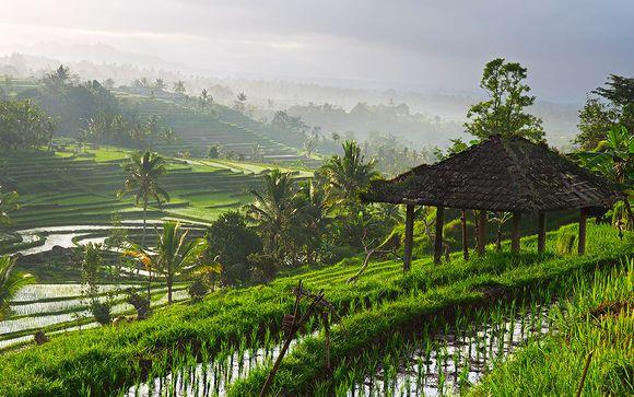 Malasia y Bali te esperan