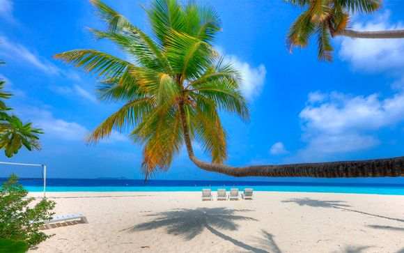 Sri Lanka y Maldivas te esperan