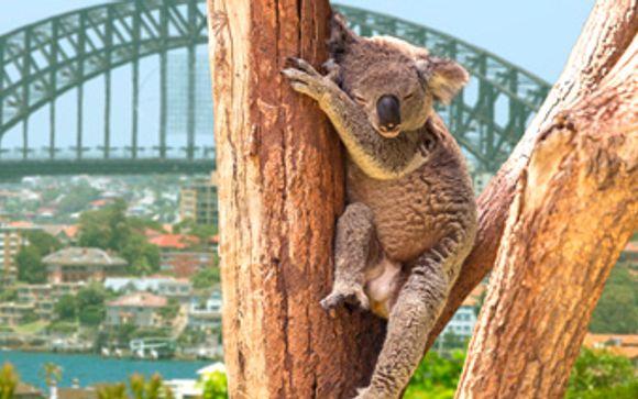 Tu hotel de 4* en Brisbane