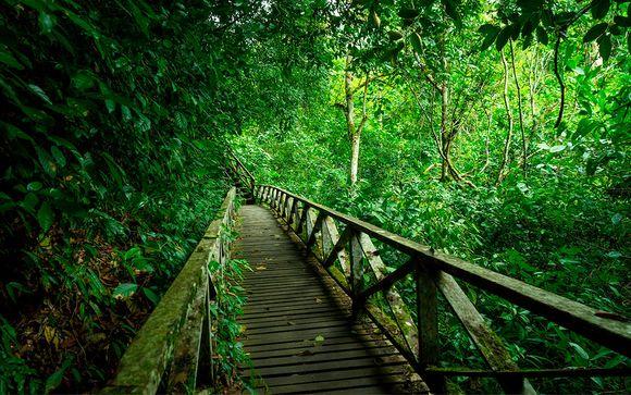 Itinerario Kota Kinabalu - Singapur (opción 2)