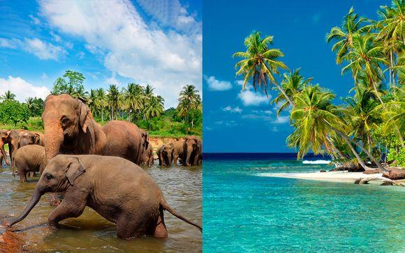 Sri Lanka Colombo - Explorando el paraíso desde 2.084,00 €