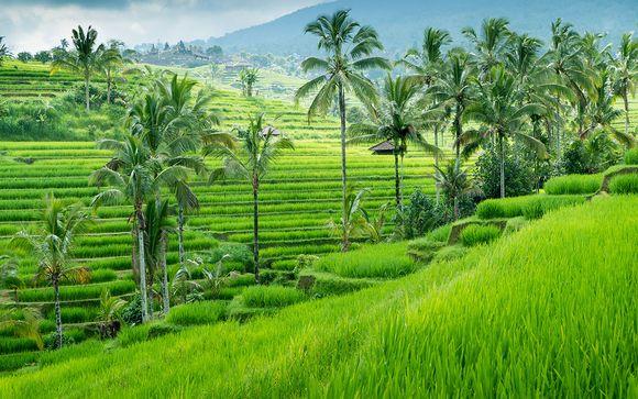 Indonésien singles gratuit datant