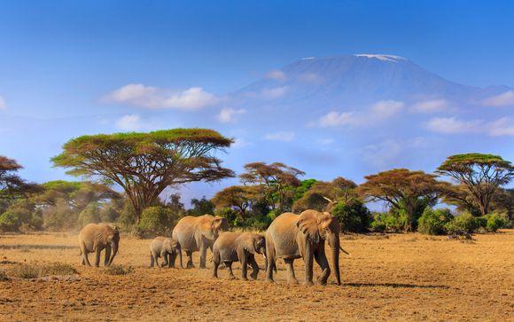 Hôtel Kilifi Beach Resort 5* & Safari à Ngutuni ou Amboseli