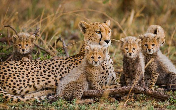 Afrika Pearl & Spa et Safaris