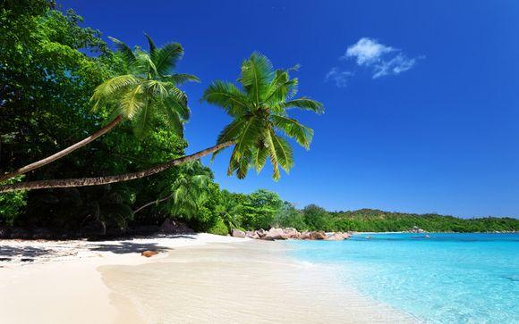 Mettez une option sur l'évasion aux Seychelles