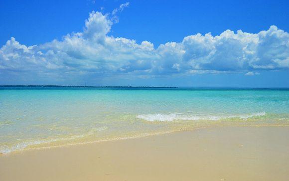 Rendez-vous... à Zanzibar