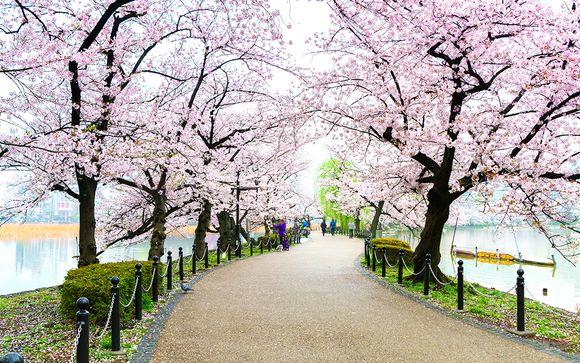 Circuit en liberté, Japon des traditions - 8 ou 10 nuits - 3* ou 4*