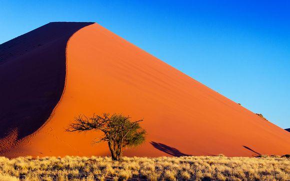 Autotour Namibie Safari et Dunes