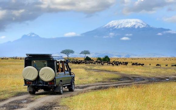 Safari de Masai Mara à l'océan Indien avec Qatar Airways