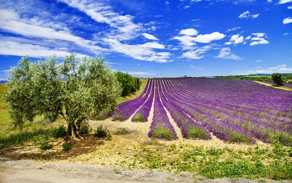 Rendez-vous... en Provence