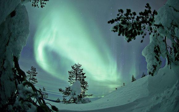 Suivez-nous... En Laponie