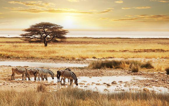 Pur Safari Afrique du Sud et séjour possible à Dubai