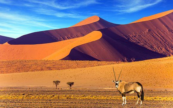 Circuit Images de Namibie en 10 nuits