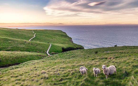 Rendez-vous... en Nouvelle-Zélande
