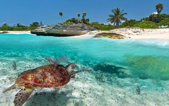 Rendez-vous... à Riviera Maya