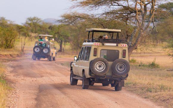 Votre safari possible en pré-extension
