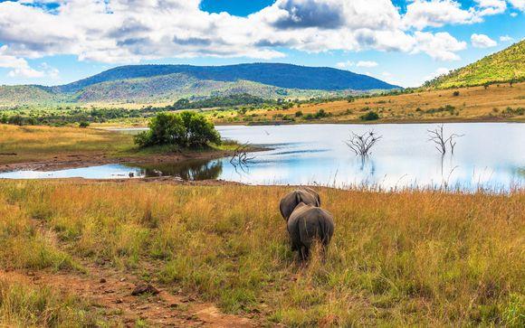 Rendez-vous... en Afrique du Sud et à l'Île Maurice