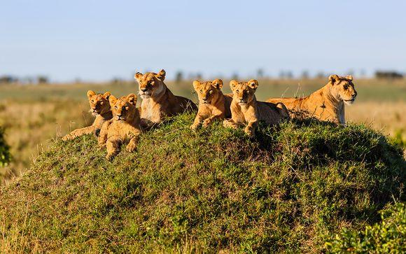 Suivez-nous... au Kenya
