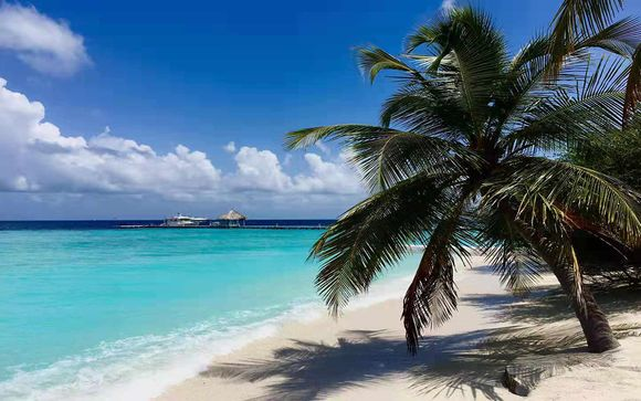 Votre extension à l'hôtel Eriyadu Island Resort Maldives