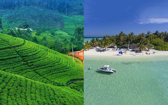 Paradis tropicaux en deux temps