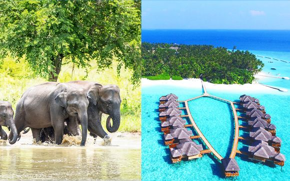 Minitour in Sri Lanka e relax All Inclusive nel blu delle Maldive